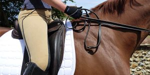 professional saddle pads
