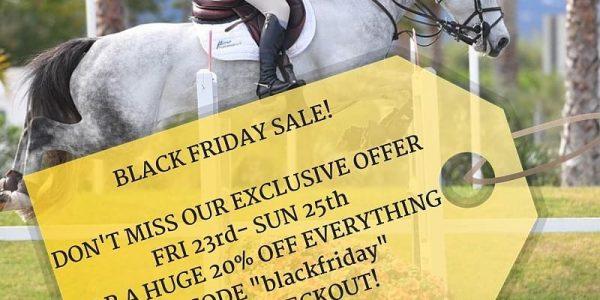 Black Friday on the horizon – Discount!