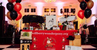 Hannah's Willberry Wonderpony